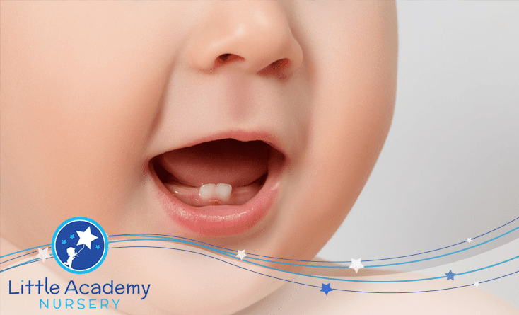 A Baby mouth is shown and two lower tooth are visible the kid is opening his mouth